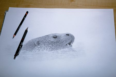 Incomplete Otter