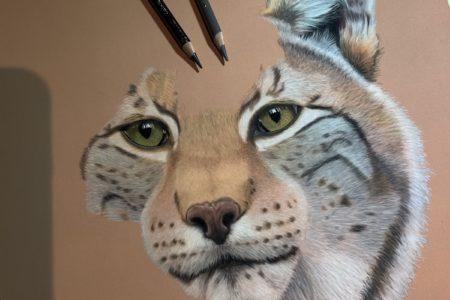 European Lynx in progress, part 2
