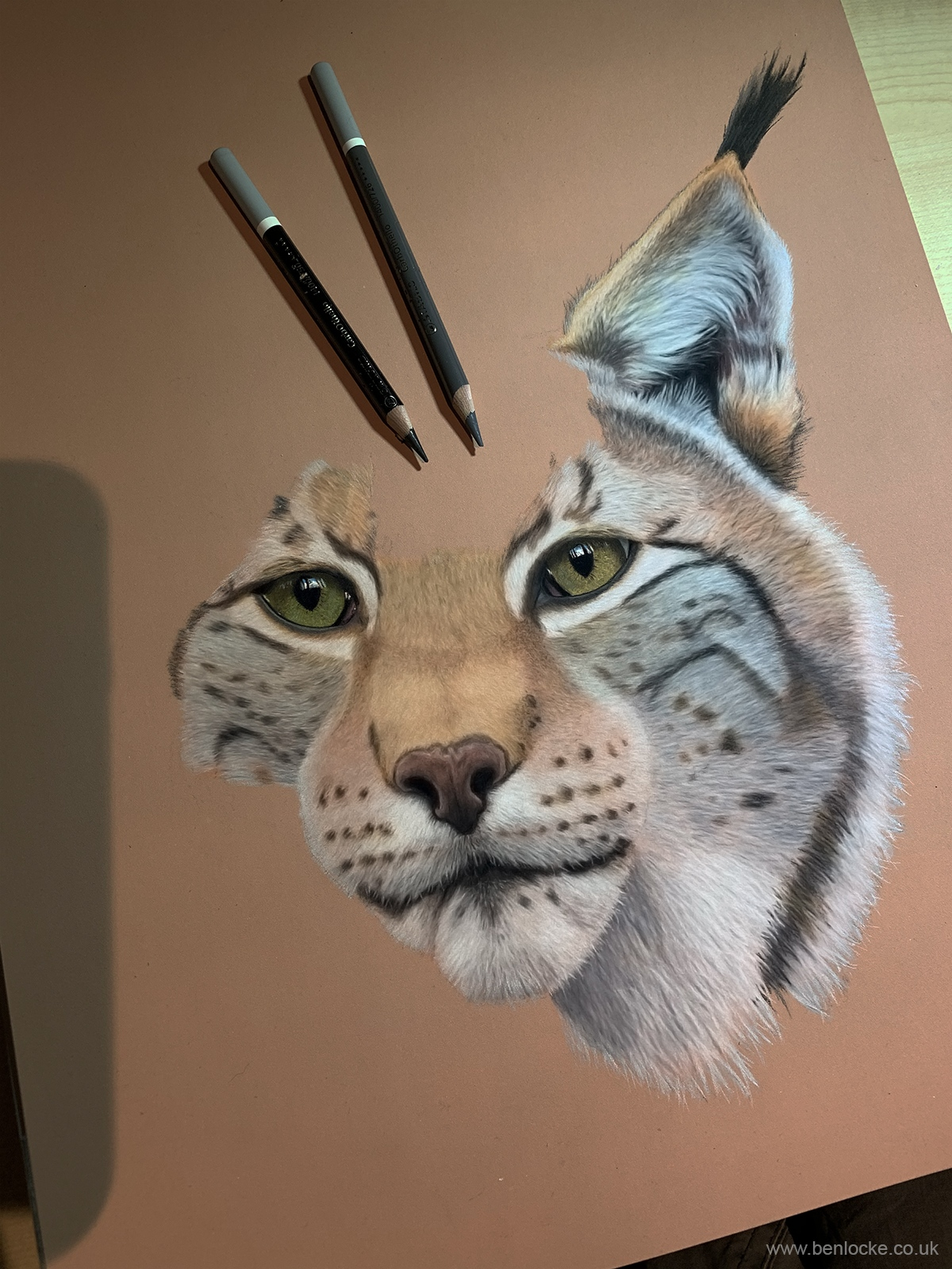 European Lynx in progress, part 2