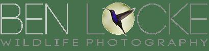 Ben Locke Wildlife Photography